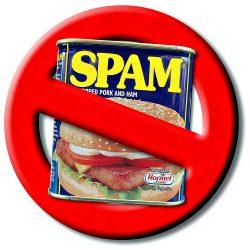 No SPAM!