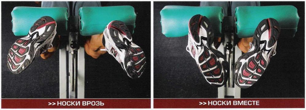 Тренинг ног. Разнообразие углов в тренировках бодибилдеров.
