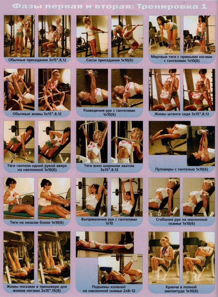 Фаза первая и вторая: Тренировка 1