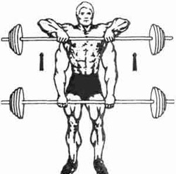 Самые лучшие упражнения на плечи