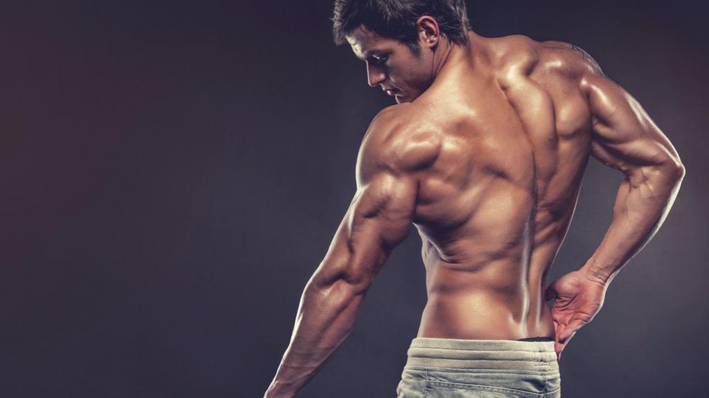 Упражнения на трицепс с гантелями – как накачать трёхглавую мышцу в домашних условиях?