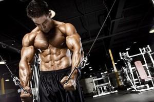 лучшие протеины для роста мышц
