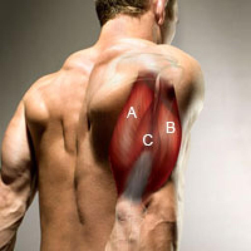 Порванные мышцы в домашних условиях