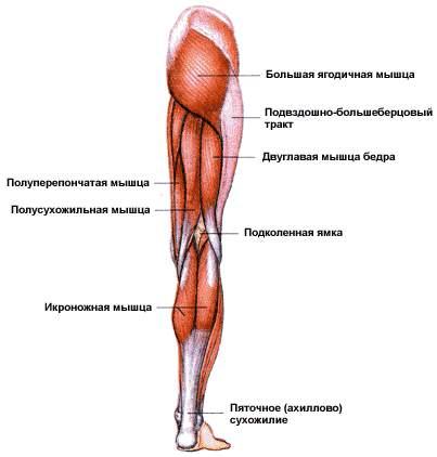 как похудеть в голени ног