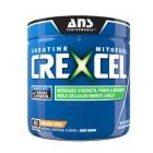 ANS Performance CreXel