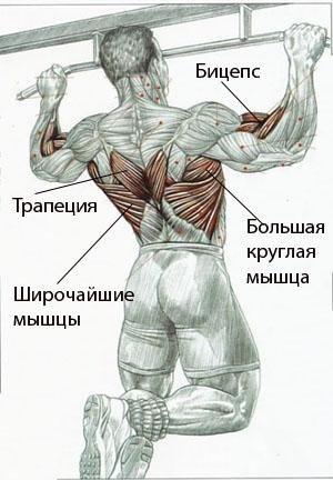 Все эти упражнения активно