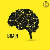 Лекарства для улучшения памяти и мозгового кровообращения