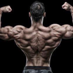 Как расправить плечи: что качать, и какие упражнения делать?