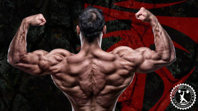 Как сделать так что бы плечи были широкими