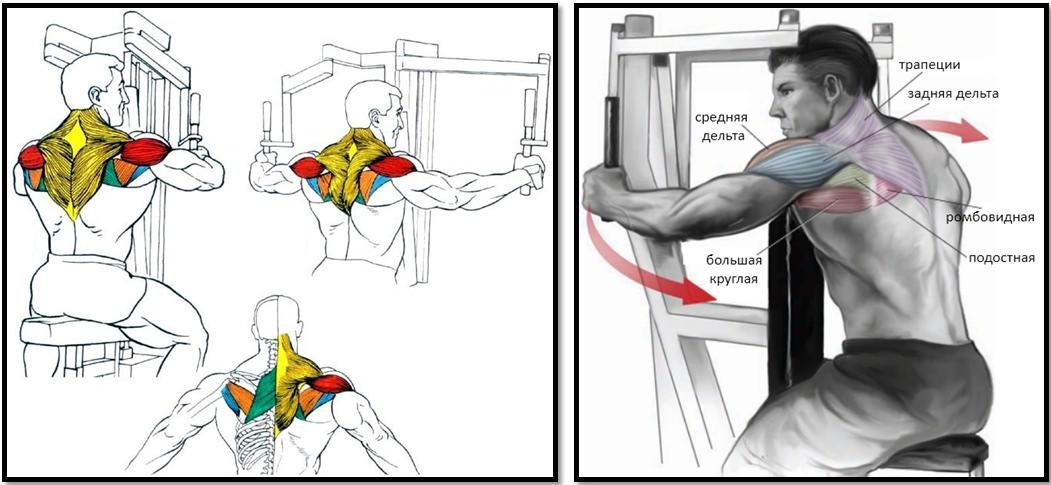 Упражнение на тренажере PECK-DECK