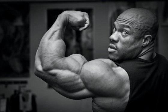 Сколько упражнений для бицепса делать за одну тренировку?